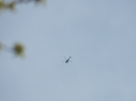 10 A regime helicopter hang in the air